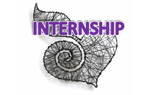Internship:  Communications Specialist for the SARChI Chair of Global Change and Social Learning